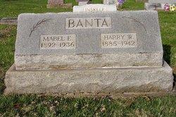 Harry Wilson Banta