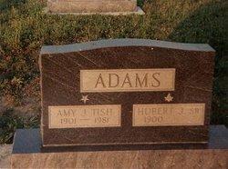Amy J <i>Tish</i> Adams