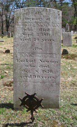 Ann Newton