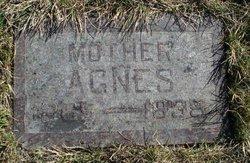 Agnes Mary <i>Maehren</i> Linnertz