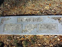 Minnie Lucretia <i>Jones</i> Carey