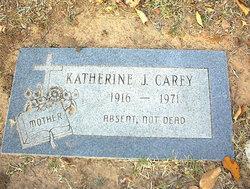 Katherine J. Carey