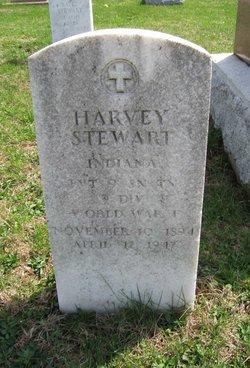 Harvey Stewart