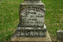 Henry Clay Blake