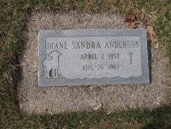 Diane Sandra Anderson