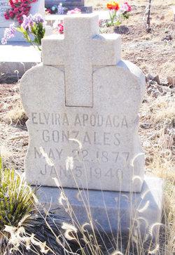 Elvira <i>Apodaca</i> Gonzales