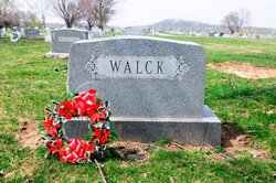 Roy J Walck