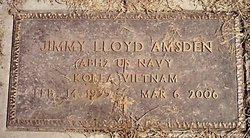 Jimmy Lloyd Amsden