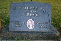 Anthony Ray Tony Reese