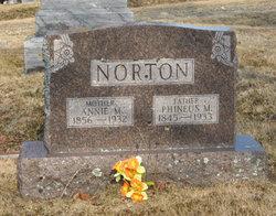 Anna May Annie <i>Wallace</i> Norton