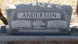 Nelda Jean <i>Herring</i> Anderson