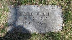 Harold Beedle