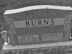 Jacob LeRoy Jake Burns