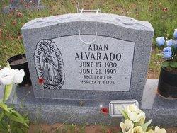 Adan Alvarado