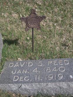 David Silvara Reed