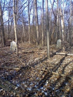 Rauch Family Cemetery