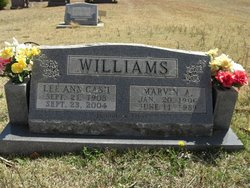 Lee Ann <i>Cash</i> Williams