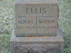 Albert F D Ellis