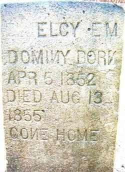 Elcy E.M. Dominy