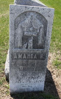 Amanda H Boyd