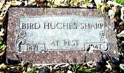 Bird Hughes Sharp