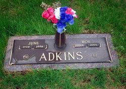 Roy Alvin Adkins