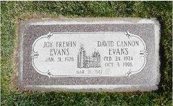 David Cannon Evans