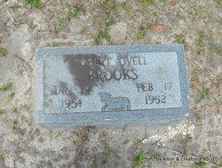 Robert Ovell Brooks