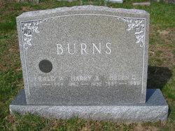 Gerald W Burns