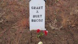 Burt Bacon