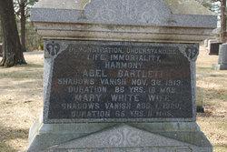Abel Bartlett