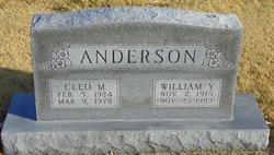 William Y Anderson