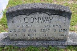 Mrs Carolyn Conway