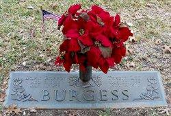 Tessie Lee <i>Sauls</i> Burgess