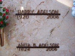 Anita B Adelson