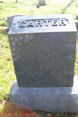 Mary Ann <i>Case</i> Carter