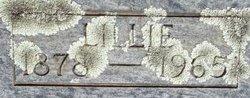 Lilla Mae Lillie <i>Moore</i> Jolliff
