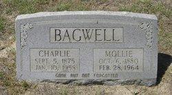 Mary Elizabeth Mollie <i>Turner</i> Bagwell