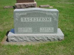 Carl Reuben Backstrom