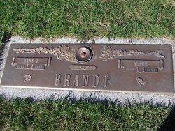 Hans Peter Brandt