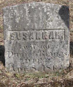 Susannah <i>Lane</i> Briggs