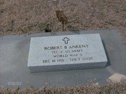 Robert B Ankeny