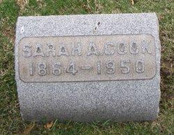 Sarah Ann <i>Knappenberger</i> Cook