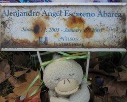 Alenjandro Angel Escareno Abarca