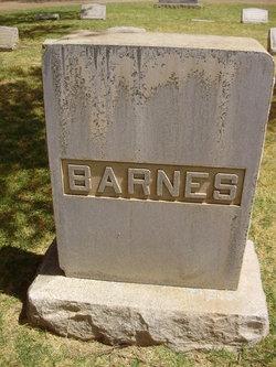 Josie Lou <i>Bradley</i> Barnes