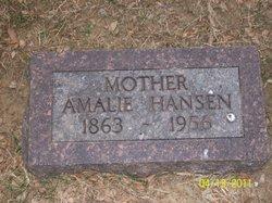 Amelia Hansen Haugen