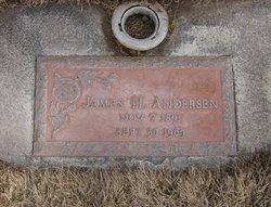 James Henry Andersen