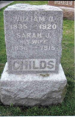 Sarah Jane <i>Collins</i> Childs