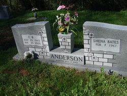 C B Anderson