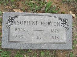 Isophine <i>Taylor</i> Horton
